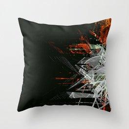 10417 Throw Pillow