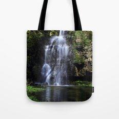 Swallet Falls Tote Bag
