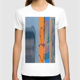 Wow State Wow Florida T-shirt