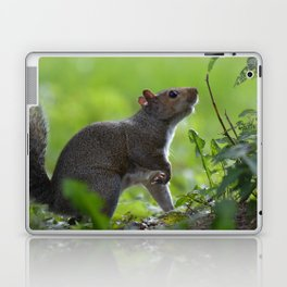 A Moment of Indecision Laptop & iPad Skin