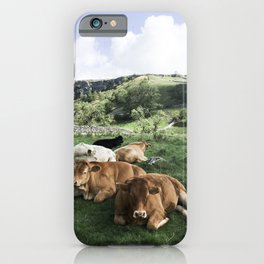 The cows iPhone Case
