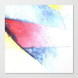 Tule Fog Canvas Print