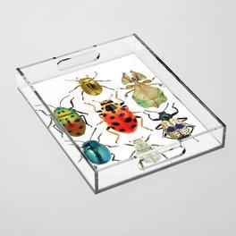Beetle Compilation Acrylic Tray
