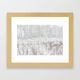Snowy Field - Minnesota - Landscape and Nature Photography Framed Art Print