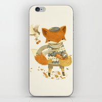 fruit iPhone & iPod Skins featuring Fritz the Fruit-Foraging Fox by Teagan White