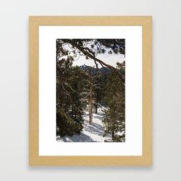 Snowy scene San Jacinto Peak Palm Springs Framed Art Print