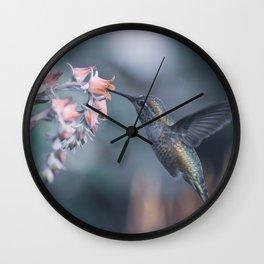 Female Anna's Hummingbird Wall Clock