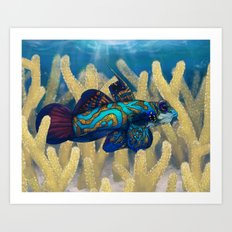 Mandarinfish Art Print