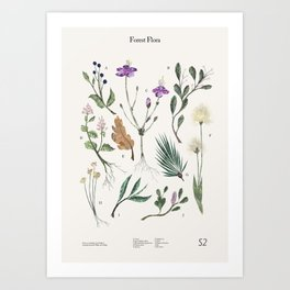 Shelter 2 - Forest Flora Art Print