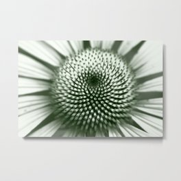 Black and White Flower Core Metal Print