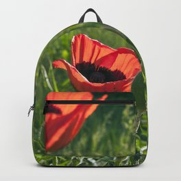 Dream of Red Poppies Backpack