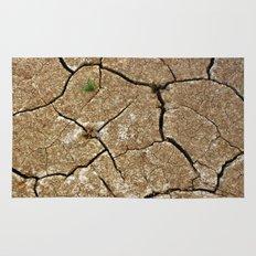 dry soil Rug