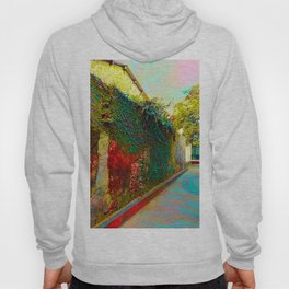 Old wall of the ancient city Hoody