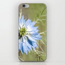 Blue flower close up Nigella love in the mist iPhone Skin