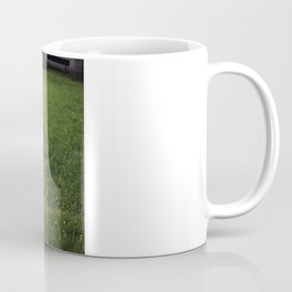Swiss Seats Coffee Mug