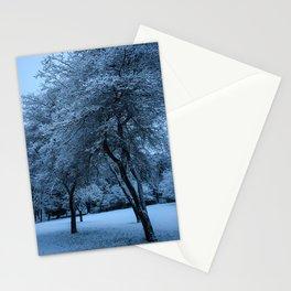 Early Morning Snow, Ravenna Park Stationery Cards