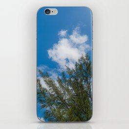 Sky View Blue and Clear Daylight Trees Forms - Part II iPhone Skin