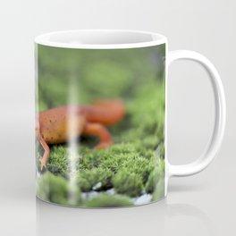Orange Salamander Travels Coffee Mug