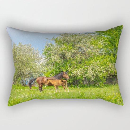 Foal Horse Baby Rectangular Pillow
