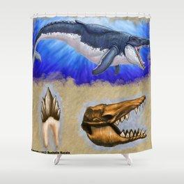 Basilosaurus Shower Curtain