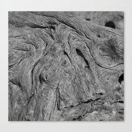 Driftwood #2  Canvas Print