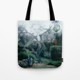Florida Springs Tote Bag
