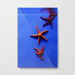 WaterStars Metal Print