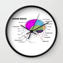 Human Brain Wall Clock