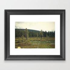 Four Mile Meadow 02 Framed Art Print