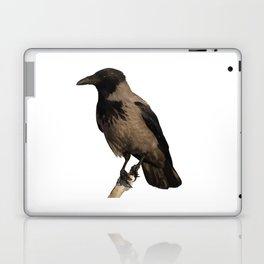 Hooded Crow Isolated Laptop & iPad Skin