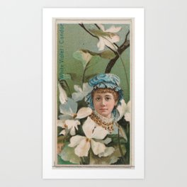 White Violet Candor, from the series Floral Beauties and Language of Flowers (N75) for Duke brand ci Art Print