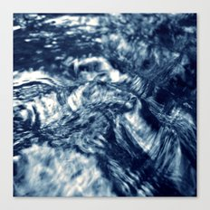 wild water Canvas Print