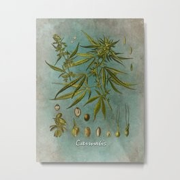 Cannabis #cannabis Metal Print