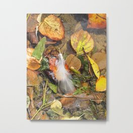 Autumn Leavings Metal Print