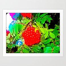 Divine Nature. Art Print