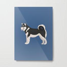 Alaskan Husky Dog Metal Print