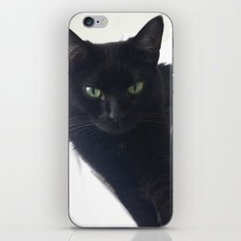 Phoebe the Cat Chilaxing iPhone Skin