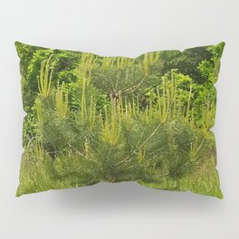 Pine and Green Meadow Pillow Sham