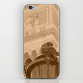 Venetian birds iPhone Skin