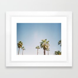 Palmtrees in Barcelona Europe | Blue Sky, Green Palm Trees Tropical vibe Framed Art Print