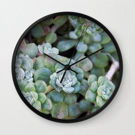 Oh My Cacti Wall Clock