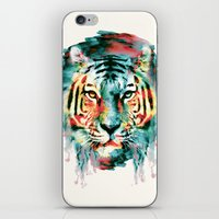 tiger iPhone & iPod Skins featuring TIGER by RIZA PEKER