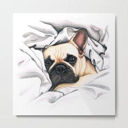 French Bulldog - F.I.P. - Miuda Frenchie Metal Print