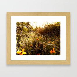 From a hike Framed Art Print