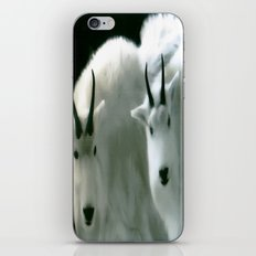 ROCKY MOUNTAIN HIGH iPhone & iPod Skin