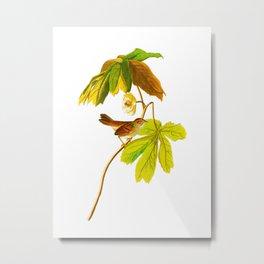 Swamp Sparrow Metal Print
