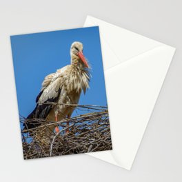 Nesting Stork  in Rabat Stationery Cards