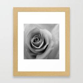 Bloomer by B & BB Framed Art Print