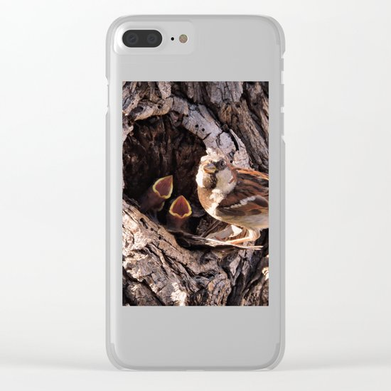 House Sparrow Keeping House Clear iPhone Case