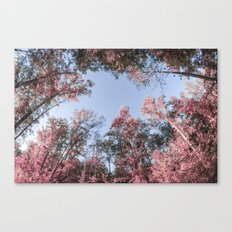 Pinktober Canvas Print